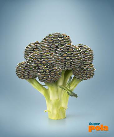 Montaje Broccoli.jpg