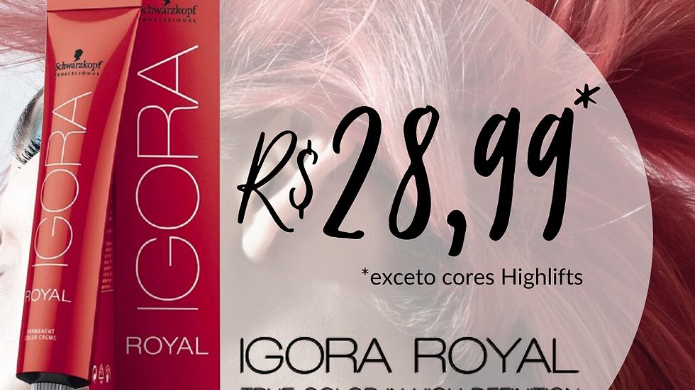 IGORA ROYAL - Coloração