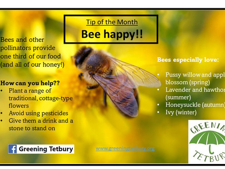 Tip of the Month: One third of our food is provided by bees and other pollinators