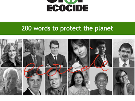 Stop Ecocide: 200 words to protect the planet