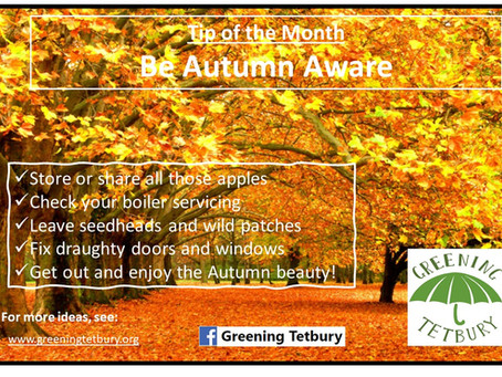 Tip of the Month: Be Autumn Aware