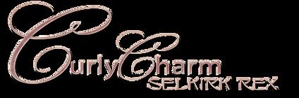 CurlyCharm-Selkirk Rex