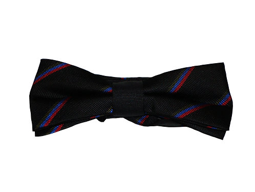 Royal Welsh Bow Tie - Thin Stripe (Pre-Tied)