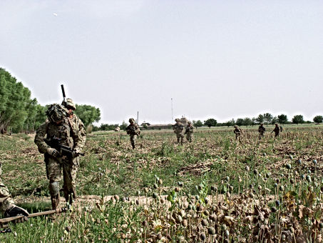 20130415-11.Foot patrol moving steadily through poppy fields.JPG