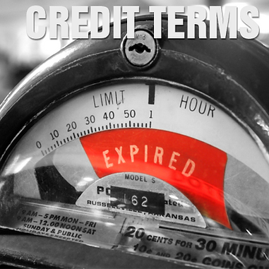 Credit Term Payments