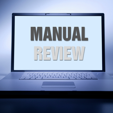Fraud Manual Reviews