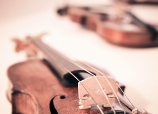 Violinist - Assessment Findings