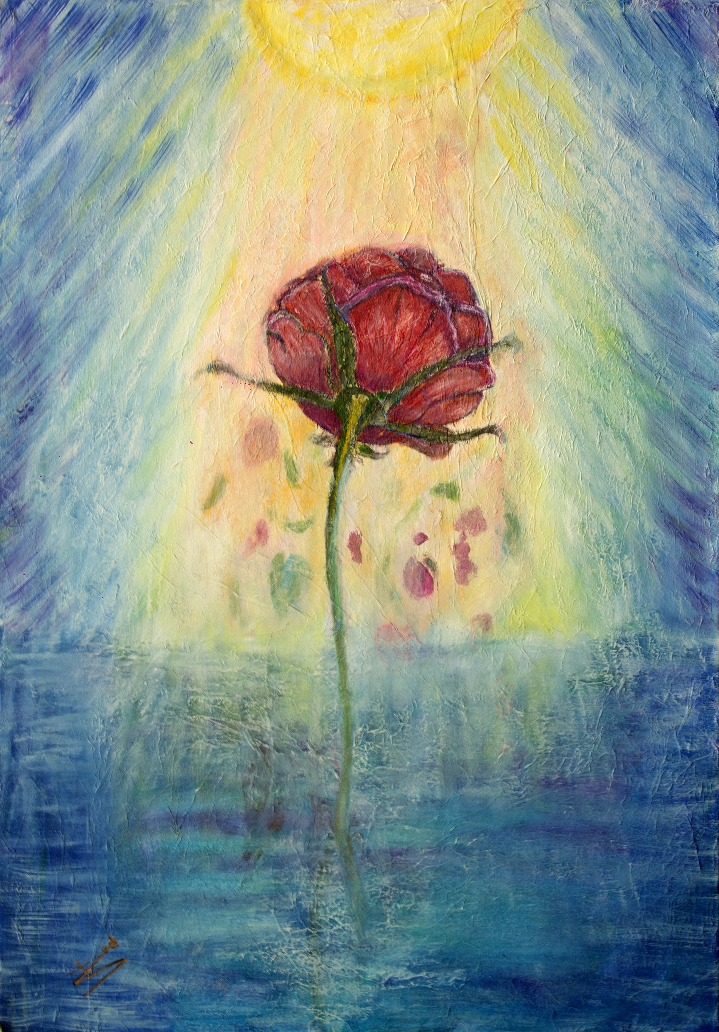La_rose_et_le_soleil