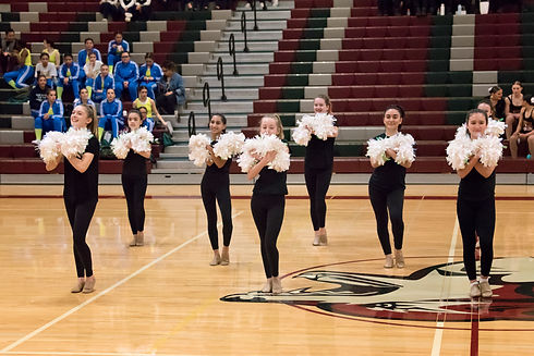 2020-02-01 - EHS Dance Annual Competitio