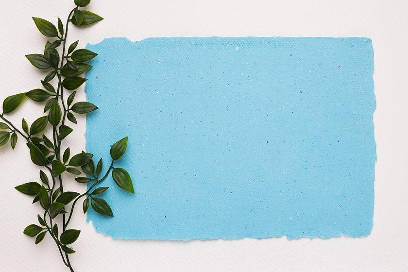artificial-green-twig-near-blue-torn-pap