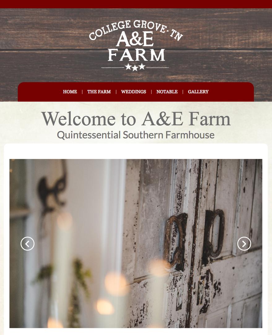 Web and Logo Design