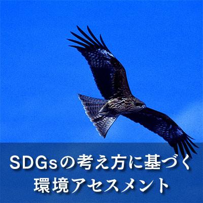 「SDGs」の考え方に基づく環境アセスメント