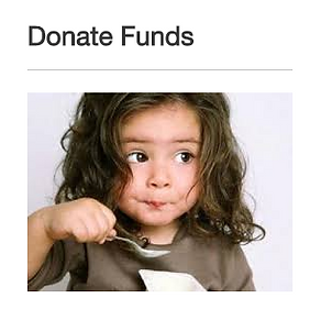 Donate-Funds.PNG