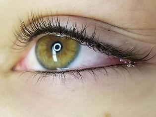 microeye.jpeg