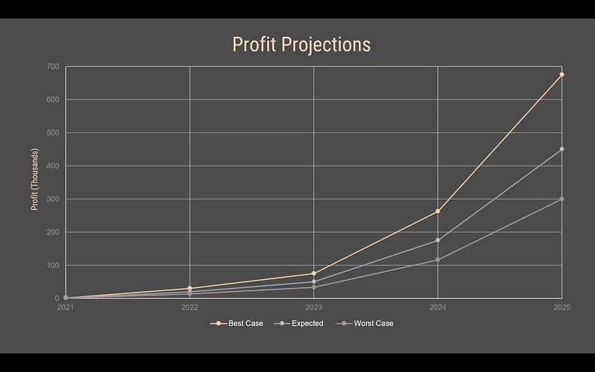 32-profit projections.png