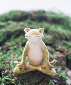 Yoga Frog - Meditation Lotus Pose