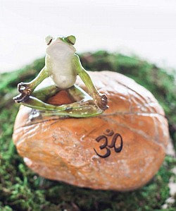 Meditating Frog on Rock with Om Symbol