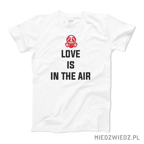 koszulka - LOVE IS IN THE AIR
