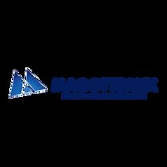 logo-magotteaux.png