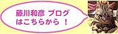 fujikawa blog