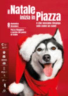 Natale in piazza 2019 DEFINITIVO.jpg