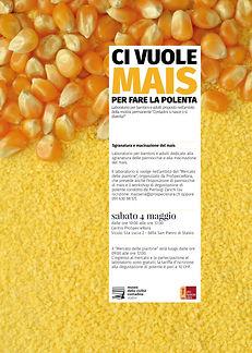 Per fare la polenta ci vuole il mais sab