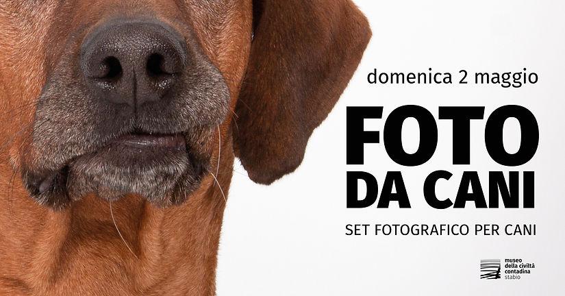 Copertina FB FOTO DA CANI 2 maggio 2021.