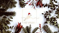 AD VISUM komanda sveikina visus su žiemos šventėmis!