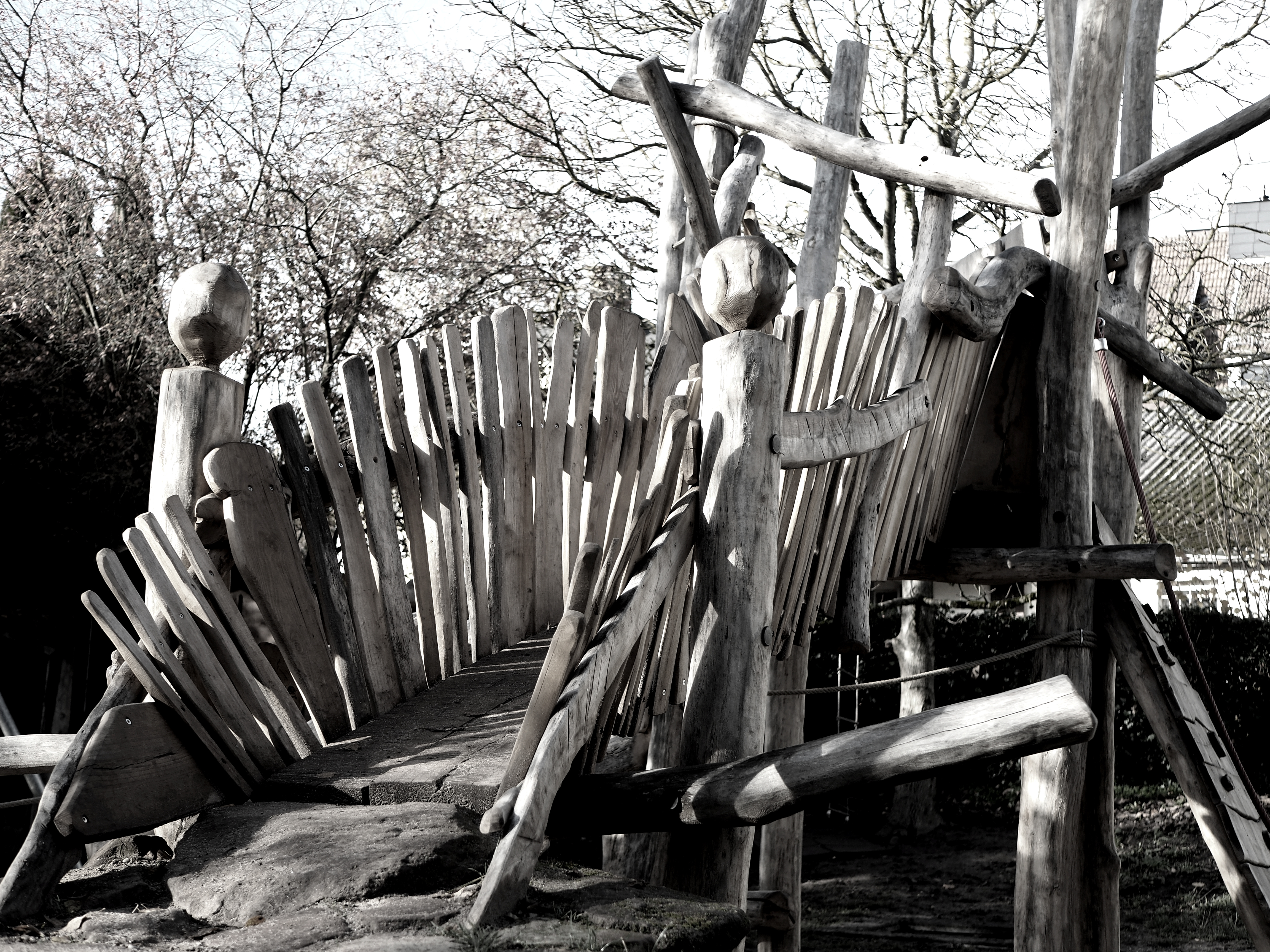 Wildes Holz