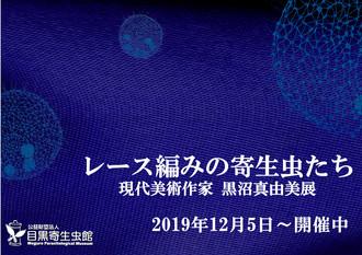 「レース編みの寄生虫たち 現代美術作家 黒沼真由美展」開催のお知らせ。