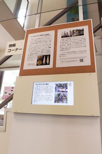 1階展示室に「情報コーナー」を新設しました。