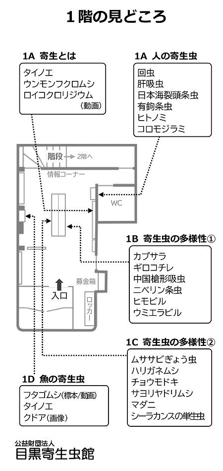 1階の見どころ0601.png