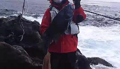 八丈島荒磯会 クチジロ