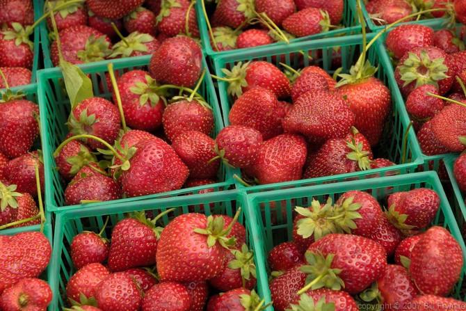 ¿Se justifica pagar el alto costo de los alimentos orgánicos?