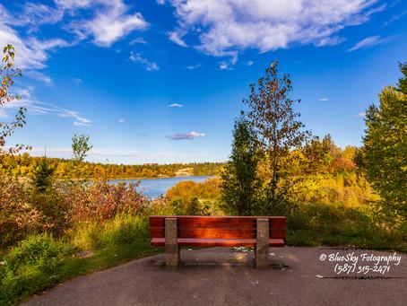 Whitemud Park in Edmonton River Valley