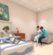 ARC Hospital Interiors- Private Room 2.png