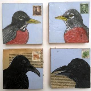 Crows & Robins, 2017