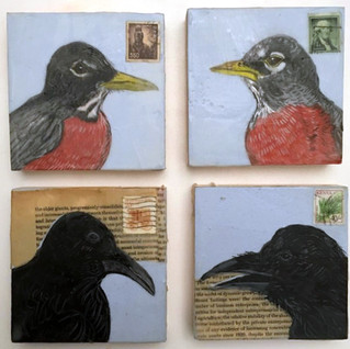 Crows & Robins, 2017