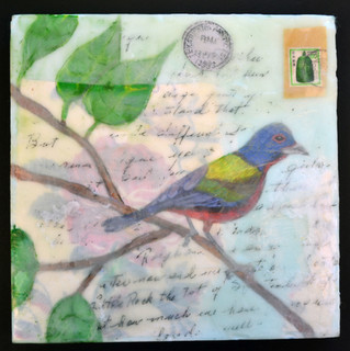 Painted Bunting, 2015