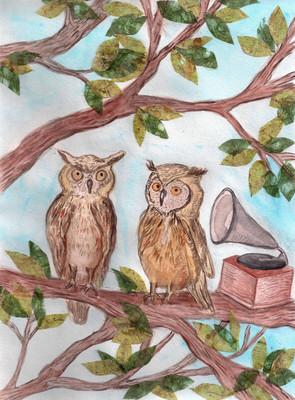 Musical Owls, 2013