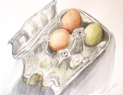 Farm Fresh Eggs, 2017