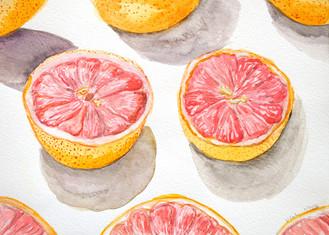 Grapefruit, 2016
