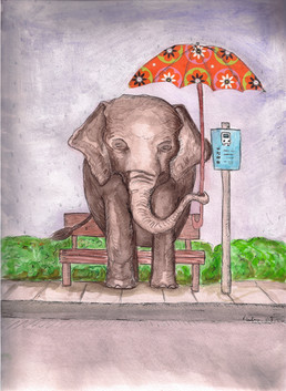 Bus Stop Elephant