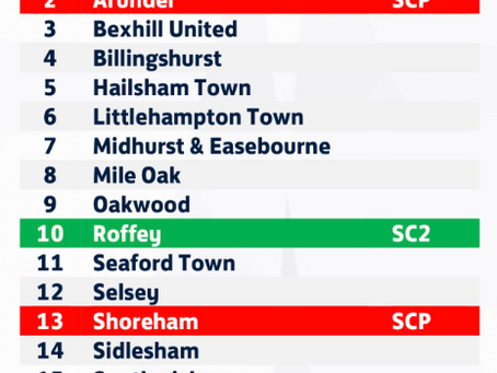 ROFFEY FC PROMOTED TO SENIOR FOOTBALL!