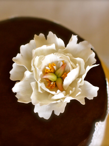 Chcolate cake with lace work and an edible flower