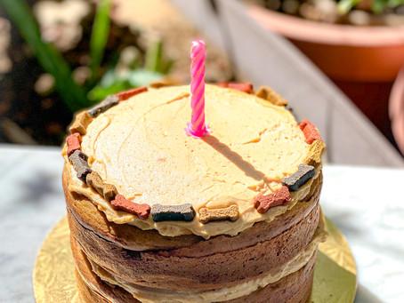 Wish and Woof Cake