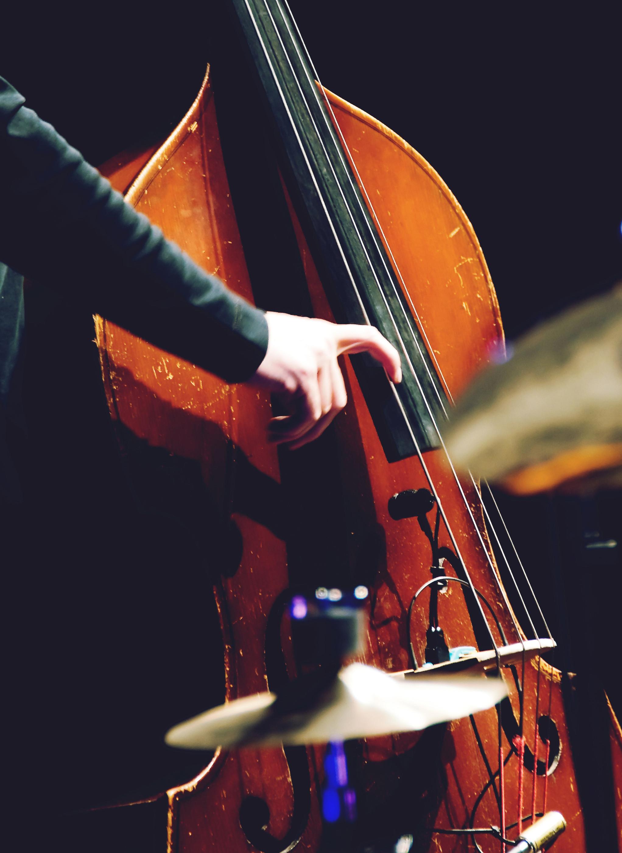 Bass Lesson 30 min
