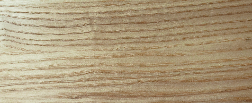 Ash sample (208mm x 148mm)