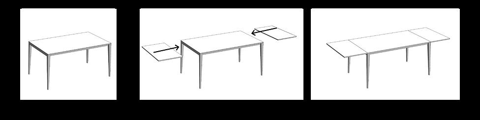 Extension mechanism