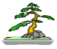 south canterbury bonsai logo - Google Se